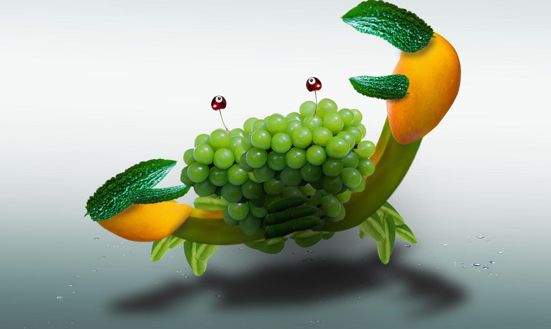 宝宝动物认知图片水果